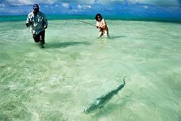flyfishing-christmas-island1